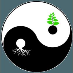 Zen Knotweed Ltd